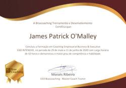 Business Executive Coach Certification